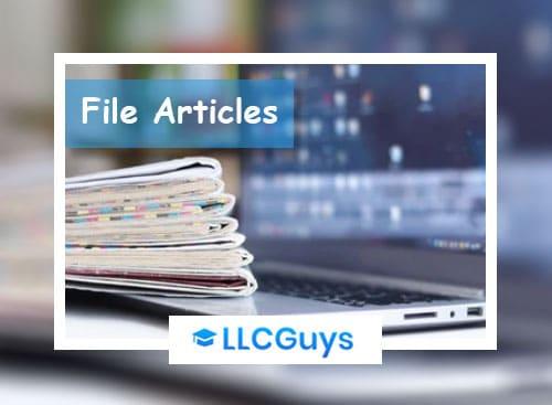 File-Article